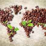 вкус кофе зависит от региона произрастания зерен